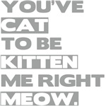 You've Cat to be Kitten me right Meow Colors shirt