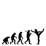 Gymnastics Evolution