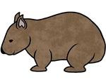 Wombat Design