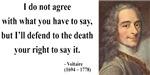 Voltaire 1