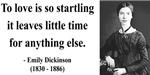 Emily Dickinson 17