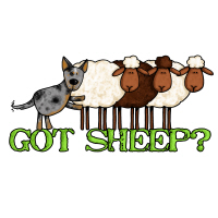 got sheep