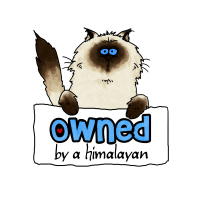 owned by a himalayan
