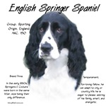 English Springer Spaniel (black)