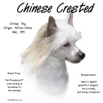 Chinese Crested (Powderpuff)