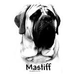 Mastiff Charcoal