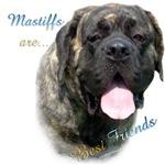 Mastiff Friend Brindle