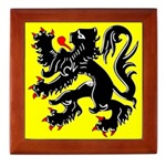 Lion of Flanders