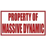 Fringe: Property of Massive Dynamic Stamp