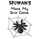 Sarcastic Spider