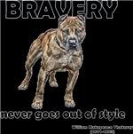 Bravery Qoute