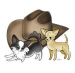 Chihuahua Cowboy Hat