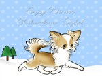 Chihuahua Winter
