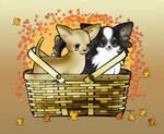 Fall Basket Chihuahuas