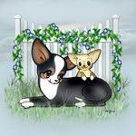 Garden Fence Chihuahua- Smooth Mom & Baby