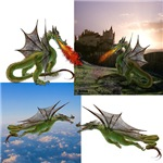 Fire Breathing Dragons, Flying Dragons, and dragons of Chinese ancestry