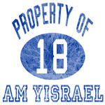 Property of Am Yisrael