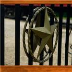 Texas Star #3