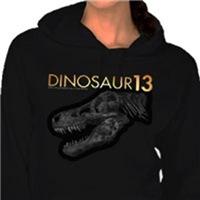 Dinosaur 13 Hoodies & Sweatshirts