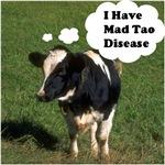 I Have Mad Tao Disease
