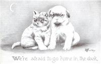 Huddled Kitten & Puppy