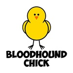 Bloodhound Chick