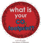 WHAT IS YOUR CO2 FOOTPRINT? PREVENT GLOBAL WARMING