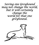Adopt a Greyhound