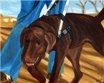 Guide Dog Jack