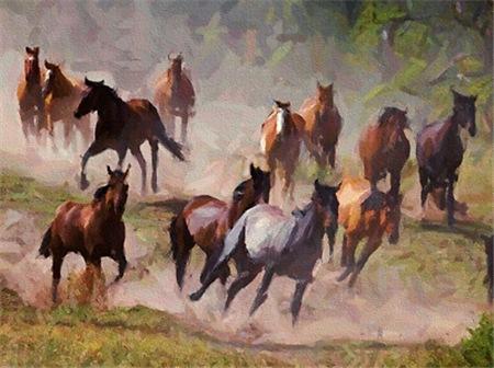 AFTM Horse Herd Tex