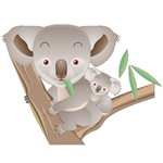 Koala Bear T Shirts and Gifts