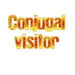 Conjugal Visitor