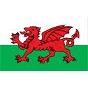 Wales T-shirt, Wales T-shirts & Gifts