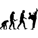 Kung Fu Evolution