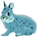 Hand Sketched Rabbit