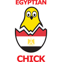 Egyptian Chick