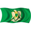 Wavy Libya Flag