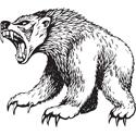 Fierce Bear