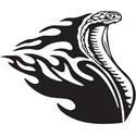 Flaming Snake