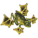 Flying Frog T-shirts & Gifts