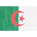 Vintage Algeria Flag