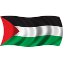 Wavy Palestine Flag