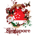 Butterfly Singapore