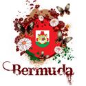 Butterfly Bermuda