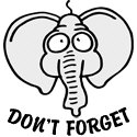 Don't Forget - Elephant
