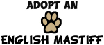 Adopt an ENGLISH MASTIFF