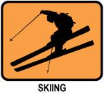 Skiing  (orange)