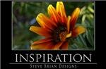 INSPIRATION12