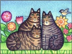 Terrific Tabby Trio