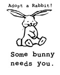 Some Bunny Needs You